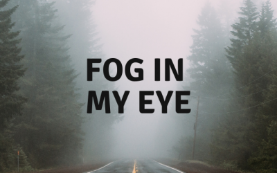 Day 10 of 10,000 push-ups: Fog Day